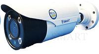 Видеокамера SMART IP-J310
