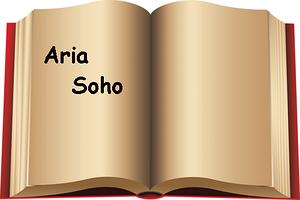 Инструкции пользователей мини АТС AriaSoho