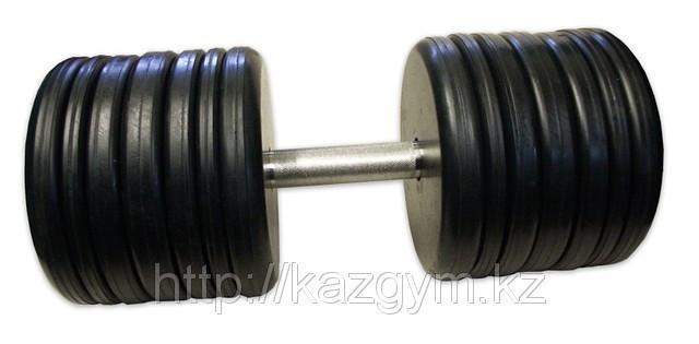 Гантели неразборные (60 кг)