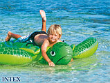 Надувная игрушка Черепаха Intex, фото 4