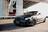 Оригинальный обвес WALD на Mercedes-Benz CLS W218, фото 1