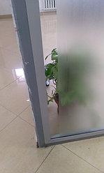 Матирование офисных перегородок 4
