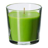 СИНЛИГ Ароматическая свеча в стакане Яблоко и груша