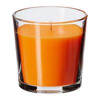 СИНЛИГ Ароматическая свеча в стакане, Персик и апельсин