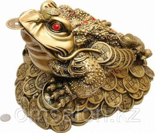 Трехпалая жаба – символ удержания богатства