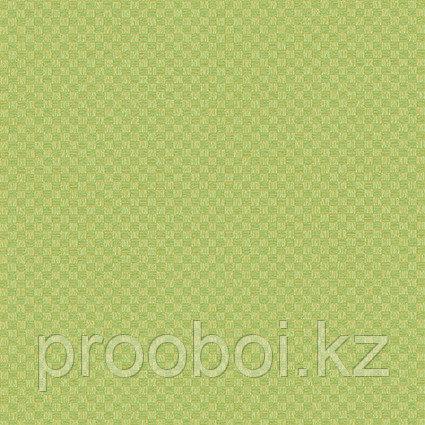 Корейские виниловые обои The Pair (метровые) 75017-2