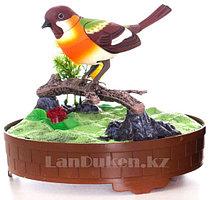 Интерактивная поющая птичка в клетке HL 507 F (музыкальная игрушка)