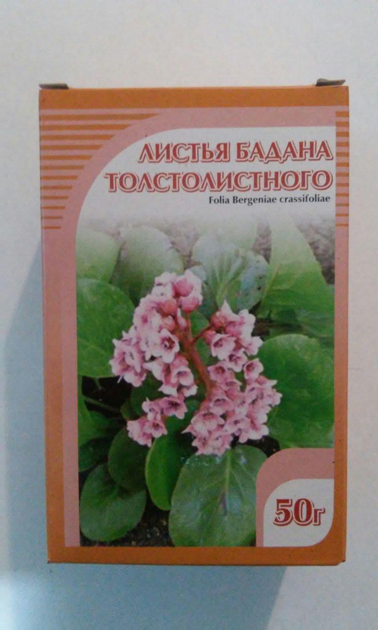 Бадан толстнолистный, листья, 50 гр