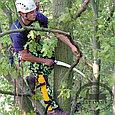Пила Silky Sugoi 360мм, 6.5зубьев/30мм, в чехле, фото 3