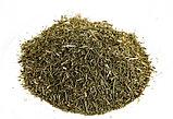 Хвощ полевой, трава 40 гр., фото 2