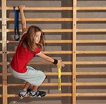 Гимнастическая стенка - шведская стенка 260*80см, фото 3