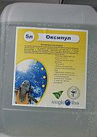 Активный кислород для бассейна Оксипул жидкий 30кг Magic