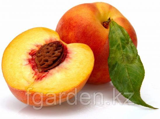 Мохнатый персик