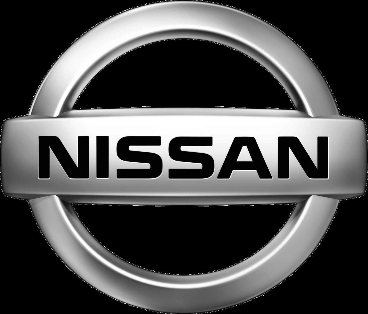 Тормозные диски Nissan Murano (03-13, задние, Blue Print)