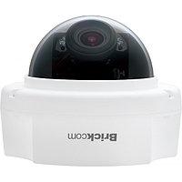 Купольная IP Камера видеонаблюдения FD-130Np