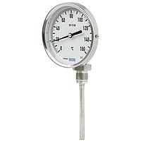 Термометр R52.01 G1/2B NG 80 мм, WIKA