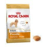 Сухой корм для собак породы пудель Royal Canin Poodle Adult
