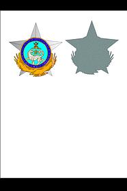 Изготовление медалей,орденов,нагрудных жетонов,статуэток. 2