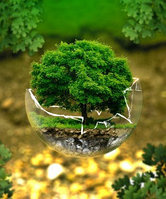 Экологический аудит на предприятиях