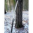 Пила Silky Katanaboy 500мм, 5зуб/30мм, складная,, фото 2