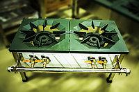 Газовая промышленная плита, 90х56х45 см, (2 конфорки, 2 круга пламени)