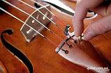 Машинки скрипичные, фото 3
