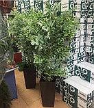 Искусственные деревья, фото 2