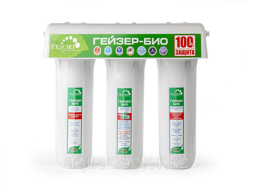 Фильтр Гейзер БИО 331 для сверхжесткой воды