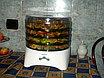 Сушка для овощей и фруктов ZELMER 36Z01, фото 2