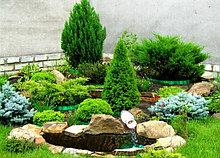 Озеленение Астана