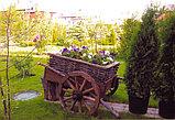 Садовые декоративные скульптуры, фото 2