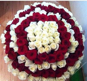 По желанию клиента и предварительному заказу мы занимаемся сборкой больших миксовых букетов. На фото-151 роза.