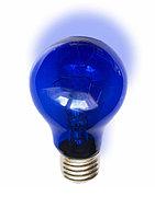 Синяя лампочка, Лампа накаливания 230-60 инд.син. А 55 (100)