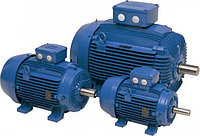 Электродвигатель АИР80B8 0,55 кВт 750 об/мин