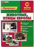 """Ranok 1020а """"Природа"""" - Животные, птицы Европы"""