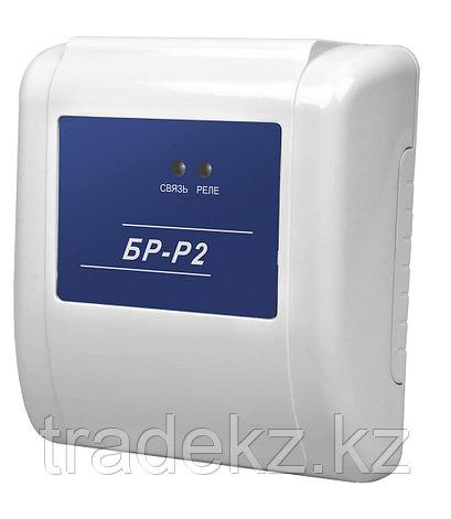БР-Р2 блок релейный радиоканальный для Галактика ЦБ GSM, фото 2