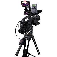 TLM-43LB Просмотровая система для Видеокамеры