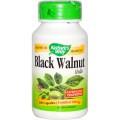 Скорлупа черного ореха.(Black Walnut) 500 мг, 100 капсул