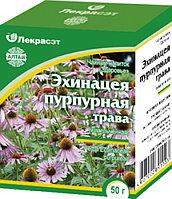 Эхинацея пурпурная, трава 50гр