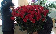 Очередное поступление свежесрезанной розы из Эквадора!)