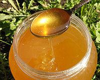 Мёд и продукты пчеловодства