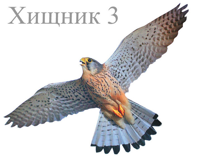 http://sityglobus.ru/image/data/2/221.jpg