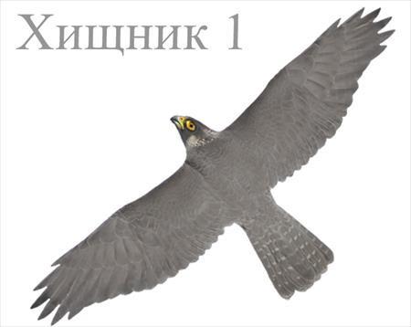 http://sityglobus.ru/image/data/2/222.jpg