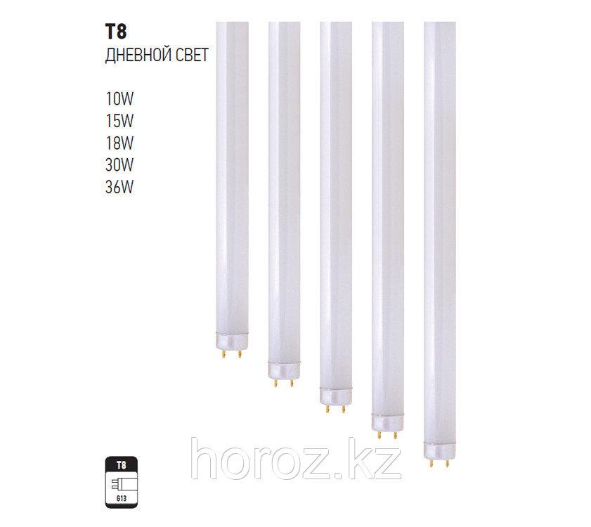 Люминесцентная лампа T8 18 Ватт, дневной свет