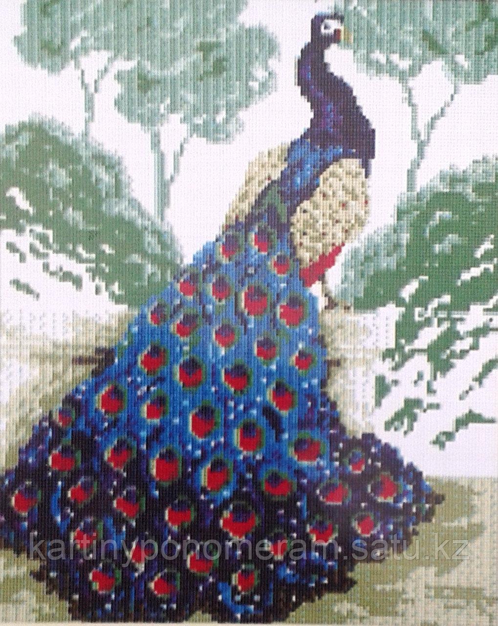 Картина стразами на подрамнике (40х50 см) D229