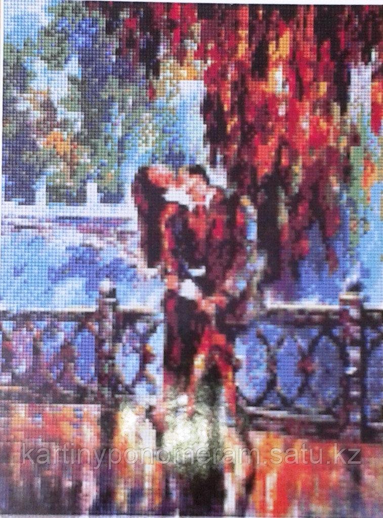 Картина стразами на подрамнике (30х40 см) R4327