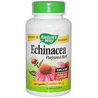 Эхинацея пурпурная, 400 мг, 180 капсул. Nature's Way, фото 1