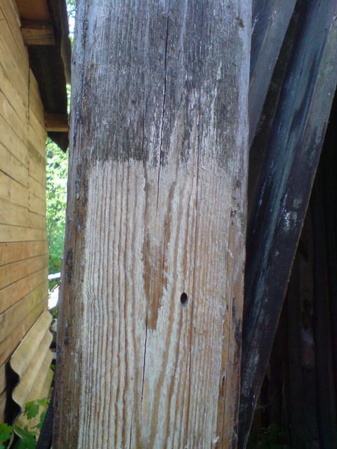 Обработку древесины производят нанесением препарата кистью или валиком с синтетическим ворсом.