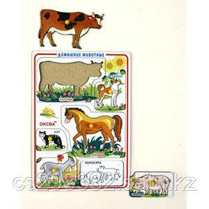 Домашние животные худ. рамки-вкладыши (Оксва) 1Э02005 А4