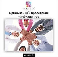 Организация и проведение тимбилдингов, презентаций